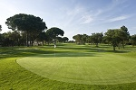 Golf Clubs in Romford - Things to Do In Romford